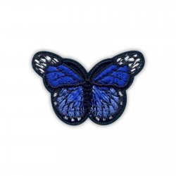 Little dark blue butterfly