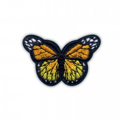 Little orange and yellow butterfly