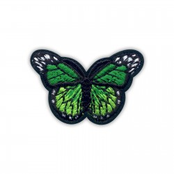 Little green butterfly