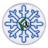 Leucojum vernum snowflake