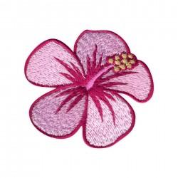 Hibiscus flower - pink