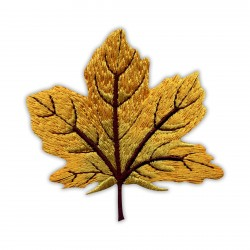 Autumn golden maple leaf - big