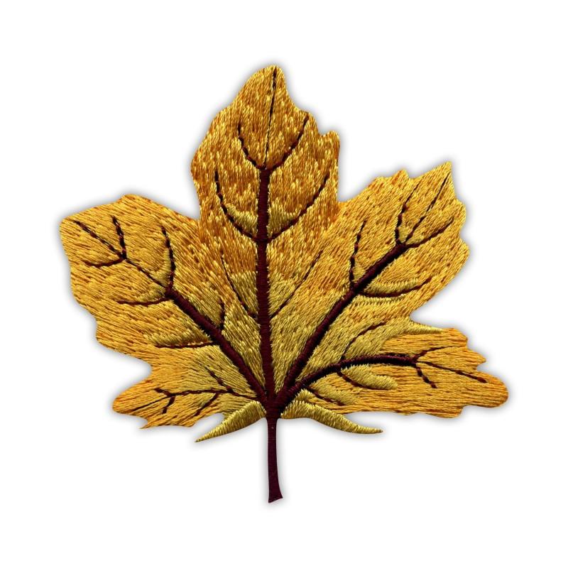 Autumn golden maple leaf - big