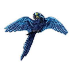 Hyacinth macaw - Parrot