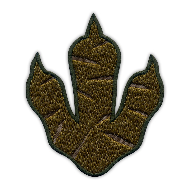 Dinosaur Footprint - T-REX