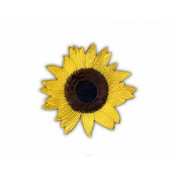 Sunflower NLS