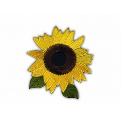 Sunflower with leaves LS