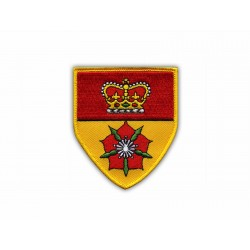 Coat of arms Hampshire - shield