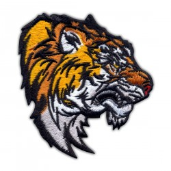 Wild Tiger - Bengal Tiger Head