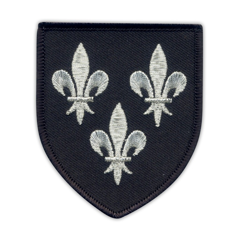 Temeria Coat of Arms - black shield